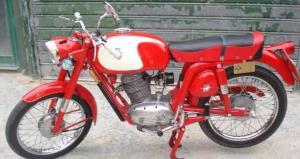 CHECCA GTE99